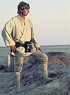Luke Skywalker, A New Hope figure