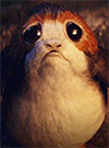 Porg Smuggler's Run 5-Pack The Black Series 6""