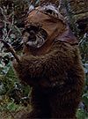 Wicket, Princess Leia Collection Endor figure