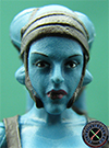 Aayla Secura Revenge Of The Sith The Vintage Collection